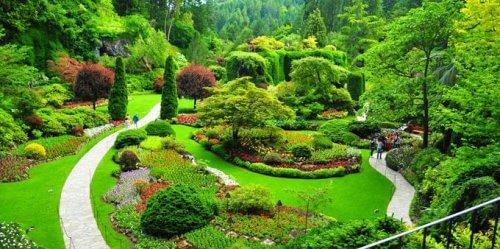 باغ ملی گیاه شناسی یکی از جاهای دیدنی تهران