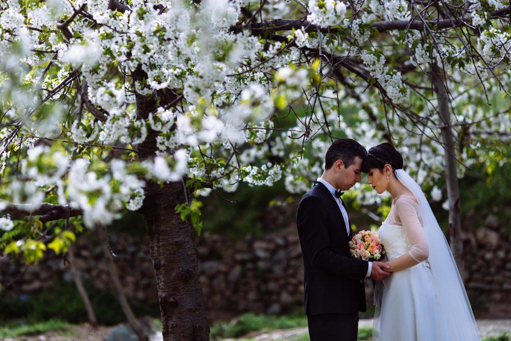 عروس و داماد در باغ