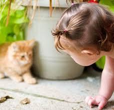 عکس از بازیگوشی کودک