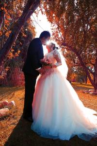 عکاسی عروس و داماد در باغ