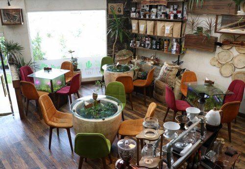کافه چوب سبز برای تولد در تهران